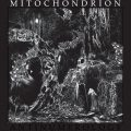 MItochondrion-Antinumerology