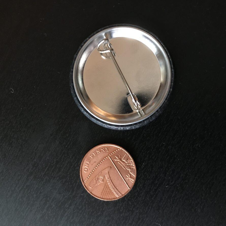pin back