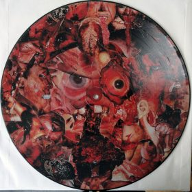 CARCASS - Symphonies Of Sickness Pic LP