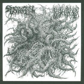 Spectral Voice / Blood Incantation – Split 7″ cover